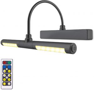 LUXSWAY Picture Light