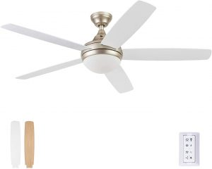 Prominence Home 51474-01 Ashby Ceiling Fan