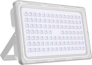 Viugreum 10W LED Floodlight